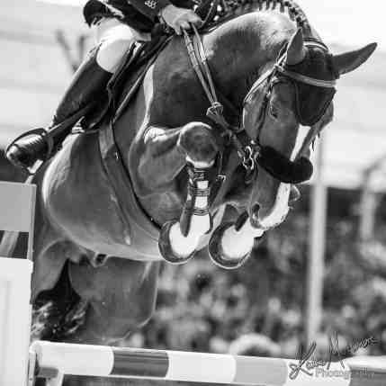 equine photographer london wiltshire GCT longines showjumping