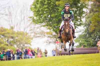 equine equestrian horse eventing badminton wiltshire hampshire devon somerset
