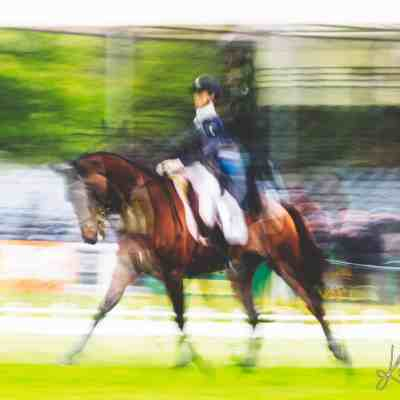 dressage badminton multiple exposure print