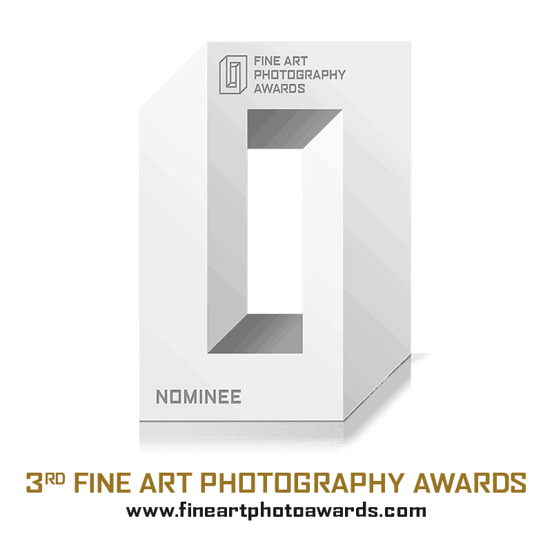 2017 Fine Art Photography Awards Shortlisted