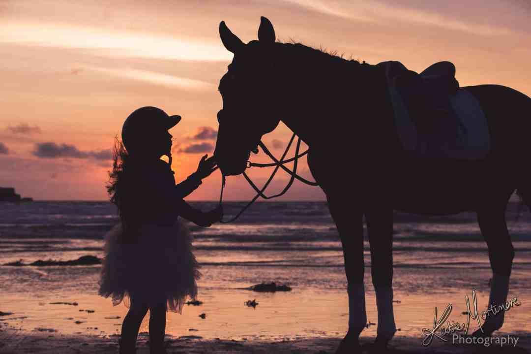 horse equine portrait wiltshire hampshire katie mortimore summer beach sea sunset Jersey