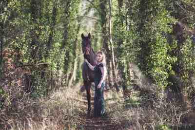 equine equestrian horse portrait wiltshire hampshire winter katie mortimore