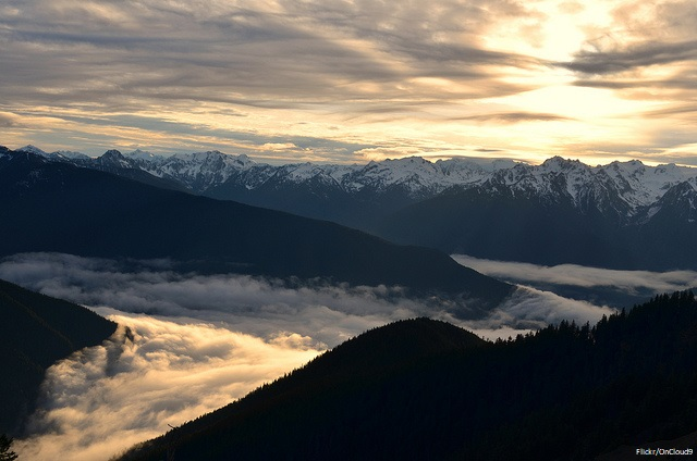 Why I love Olympic National Park - Hurricane Ridge