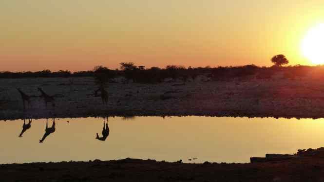 Image by Smadar, http://mrg.bz/QO9wcj