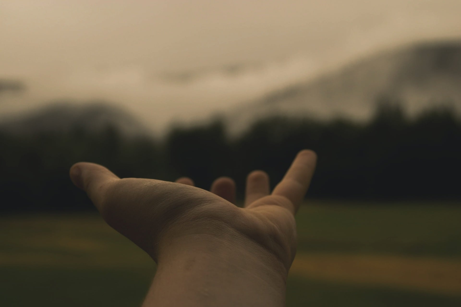 A photograph of a hand outstretched, palm up, with mountains in the background.