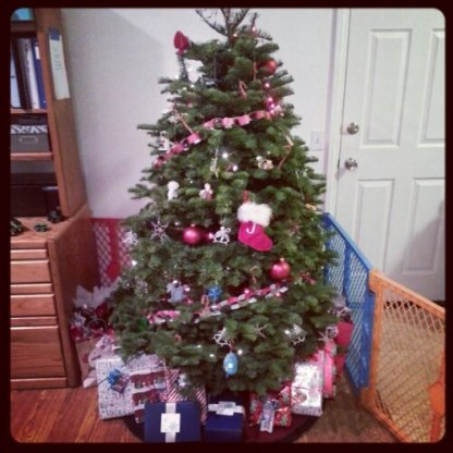 """Only the second live tree we've had in our home. I feel like such a """"newb"""" when it comes to the care of these things, but I guess it's pretty basic."""