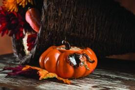 Pumpkin Simmering Pot.