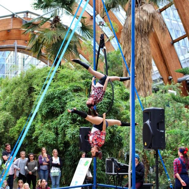 The Veritafarm Circus - Sheffield Festival of the Mind
