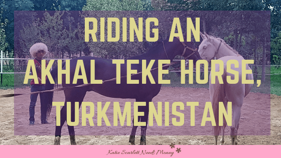 Akhal Teke riding experience in turkmenistan