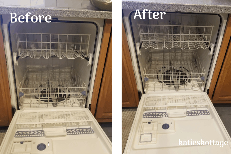 how to clean a dishwasher. Before and after pictures.