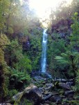 Erskine Falls - free entry, beautiful view!