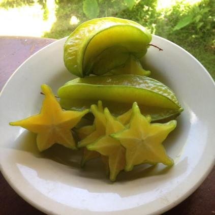 starfruit from the farm