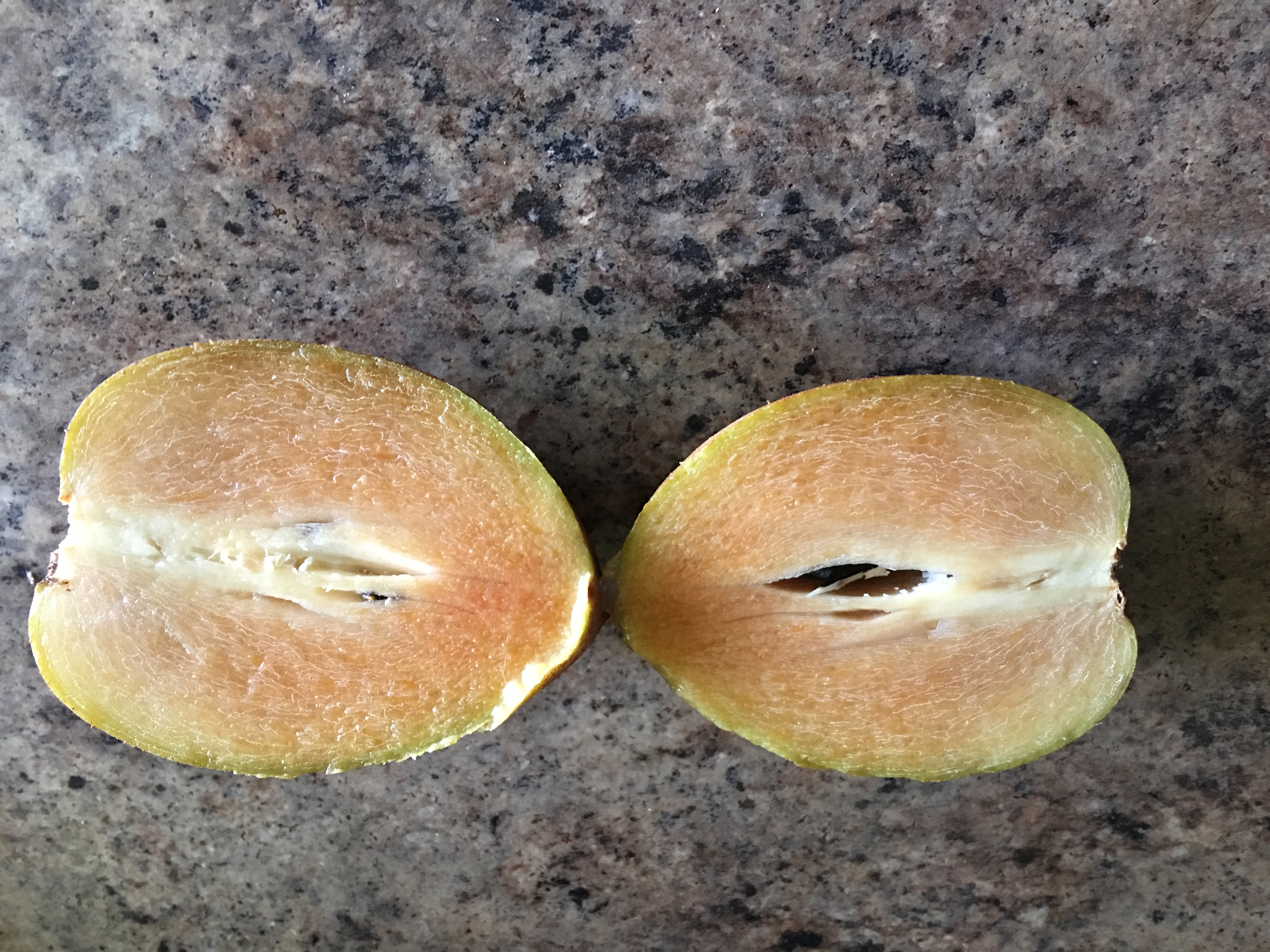 you must try chico sapodilla fruit