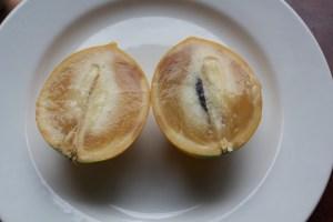 Abui taste