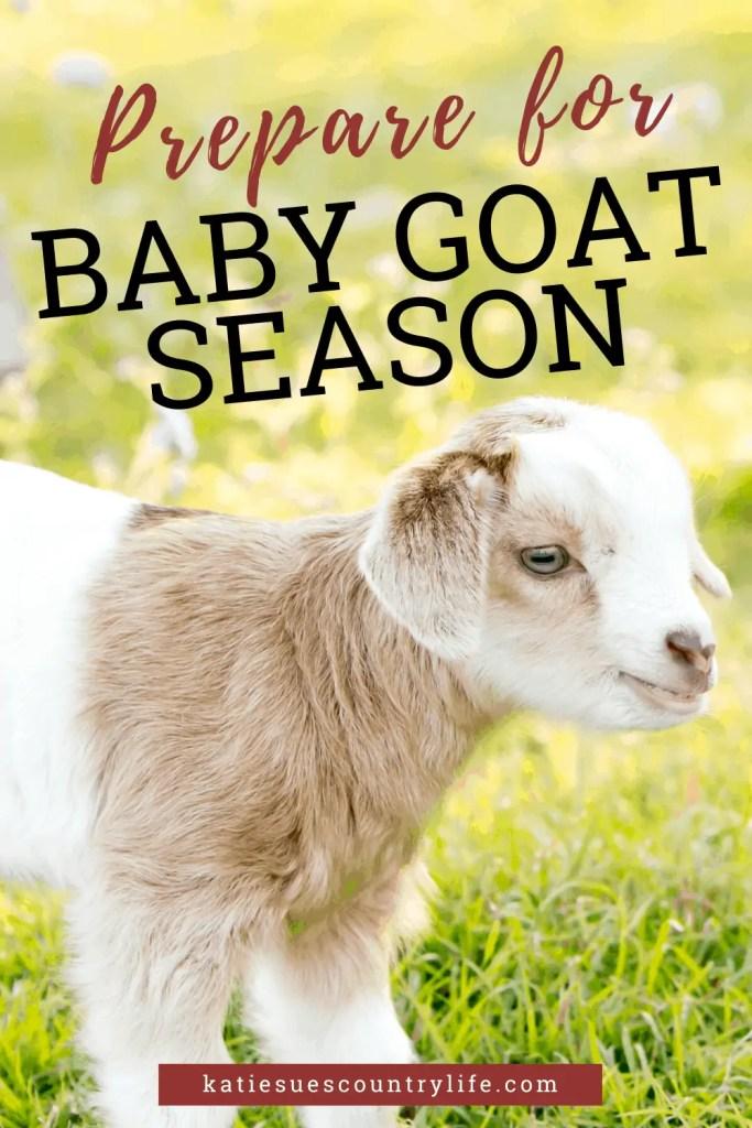 Baby Goat Season