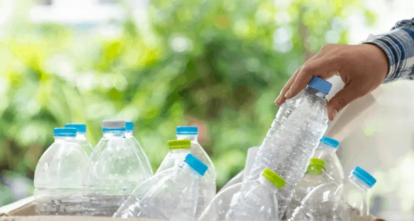 Plastic Bottles for DIY Herb Garden Container
