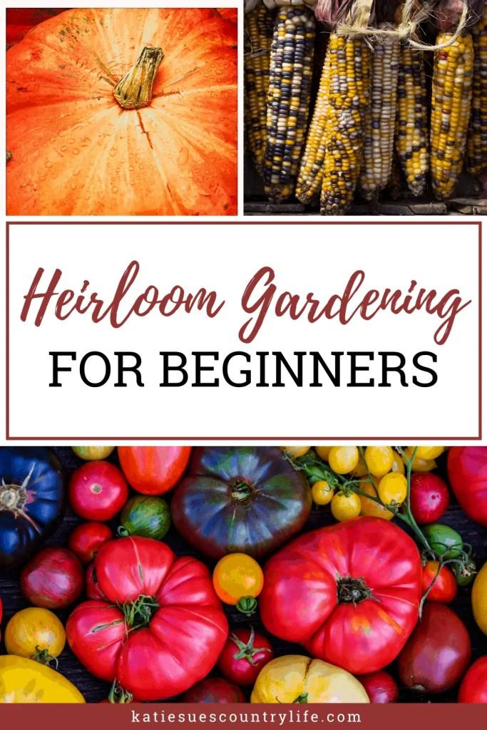 Heirloom Vegetables for Beginners