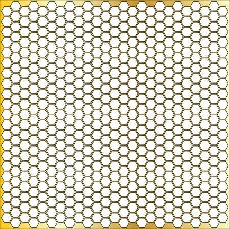 Honey Comb Picture