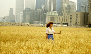 Agnes Denes: Wheatfield – A Confrontation, 1982 Two acres of wheat planted and harvested in Battery Park landfill, downtown Manhattan. Commissioned by Public Art Fund, New York City. Photograph: © Agnes Denes. Courtesy the artist