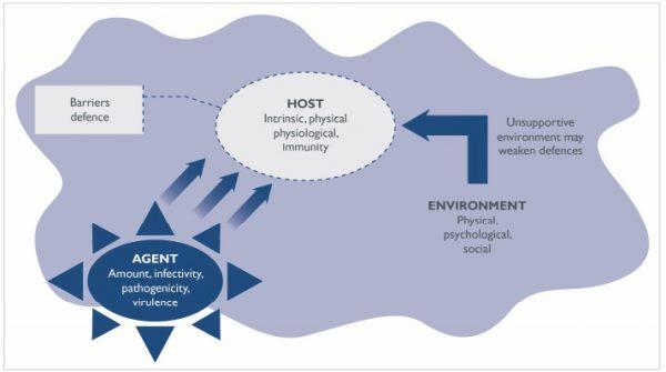 model epidemiologikal