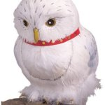 hedwig-owl-harry-potter