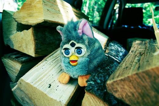 Furby goes camping.