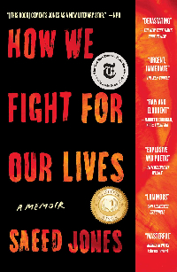 How to Fight for Our Lives Book Cover
