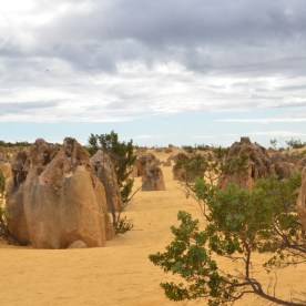 Die Pinnacles-Wüste ist die Attraktion im Nambung Nationalpark