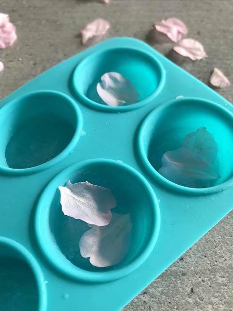 Die frischen Blütenblätter in den Eiswürfelform geben und mit abgekochten Wasser übergießen.