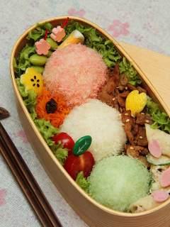 Sakura Bento: buntes Festtags-Picknick