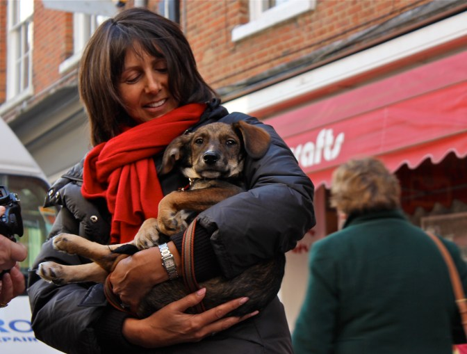 This lady was telling us a story about how she saved this little fellow from Romania. This puppy was about to be euthanised but she arranged everything so that she could bring him with her to England. His gratitude radiated on miles - especially from his eyes - and her love for him was adorable.