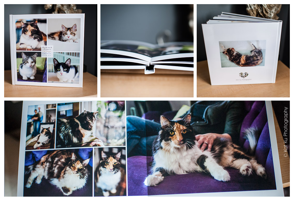 portrait backdrop/portrait backdrops Photos/ Portrait Photography Backdrops