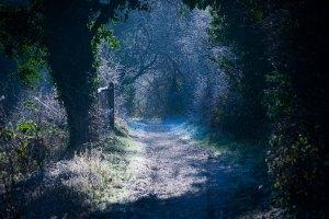 Woodsmill January Sussex photographer
