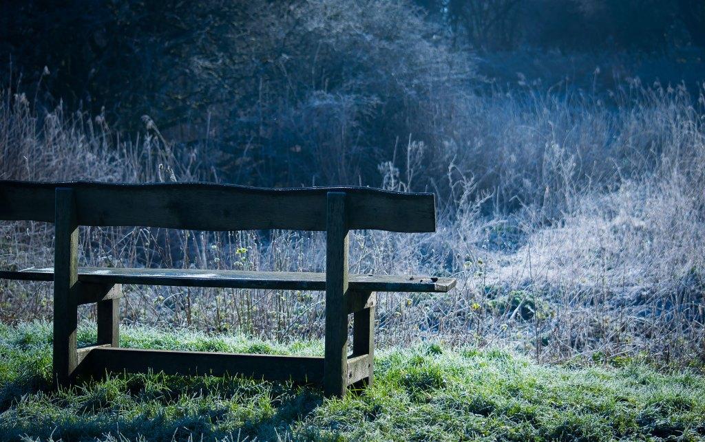 Woodsmill Sussex wildlife trust