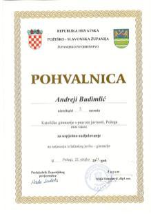 Andreja Budimlić