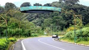 Rwanda National Parks rwanda national parks - nyungwe forest national park 300x170 - Rwanda National Parks-Akagera Park-Volcanoes Park-Nyungwe Forest