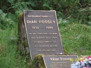 Dian Fossey Grave Hike and Karisoke Research Camp