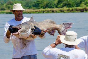 sport-fishing-in-murchison-falls-by-katona-tours