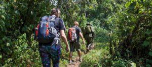 Mt. Karisimbi Volcano mt. karisimbi volcano - mt karisimbi hike by katona tours 300x134 - Mt. Karisimbi Volcano Hike Rwanda
