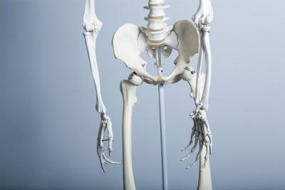 難病の筋ジストロフィーは筋骨格の症状が出る