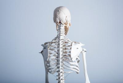 脊髄小脳変性症の針灸は脊髄と脳に効かせる