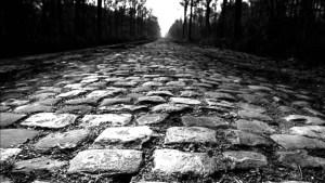 Cobblestones on Paris Roubaix cycle race