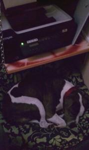 Under the printer