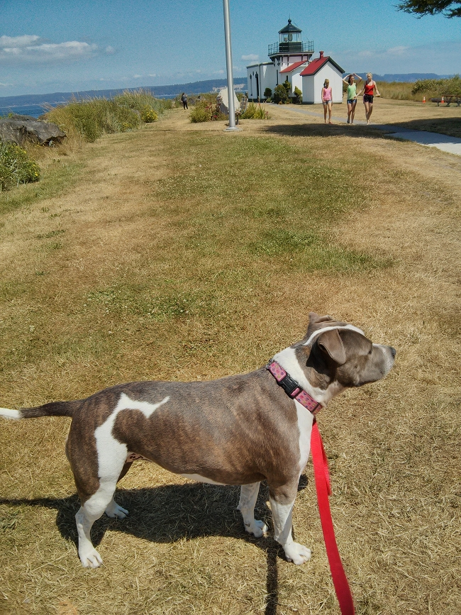 Bella at Point No Point Lighthouse.