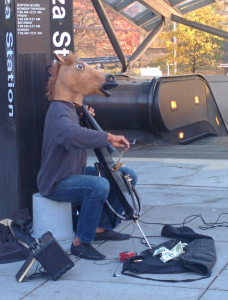 horsecelloDC2014