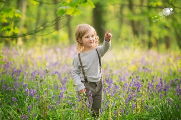 A boy stood amongst the bluebells looking off to the right and pointing - Spring Wood near Whalley