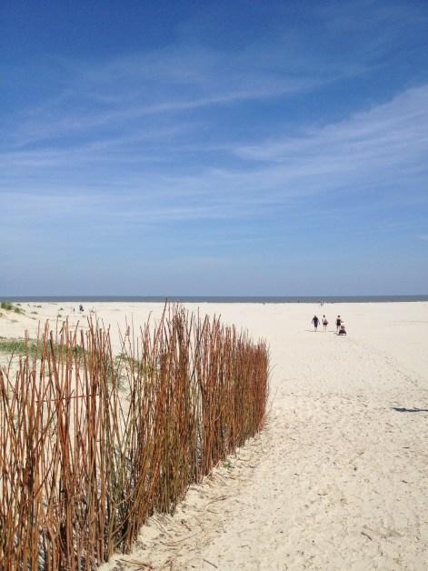 Nordsee - Schiermonnikoog
