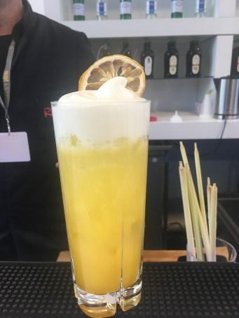 Wellsness Drinks von Fachinger