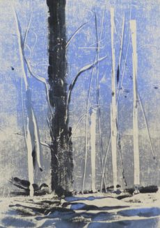 BLUE WOODS 1, 2016 Monotypie 21 x 15 cm