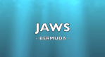 Jaws in Bermuda